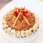 S'mores Campfire Cake